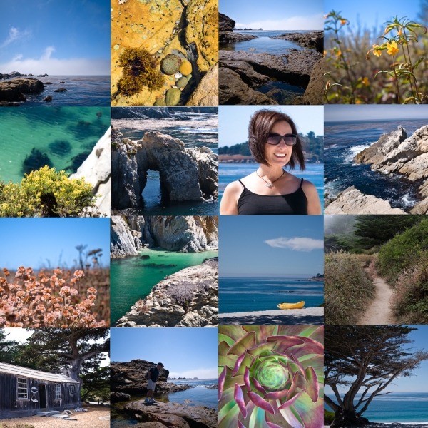 20090920-Point Lobos